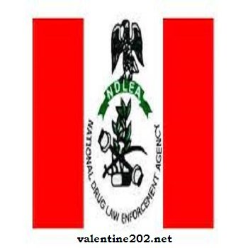 NDLEA Releases 2021 Recruitment List for Final Screening - www.ndlea.gov.ng